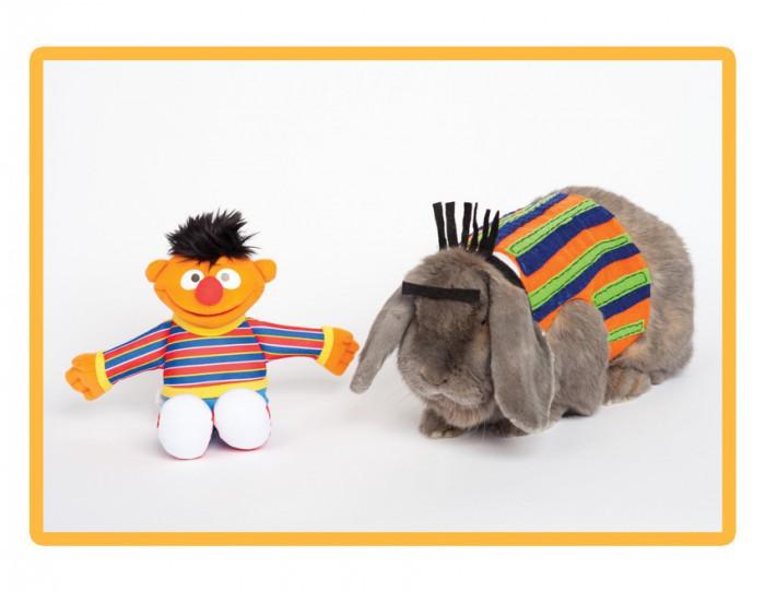 sesame-street-bunny