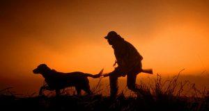В Самарской области охотник застрелил женщину, собиравшую грибы